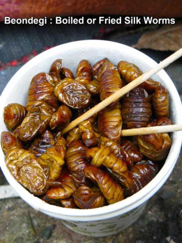 bizarre-weird-foods-from-asia (7)