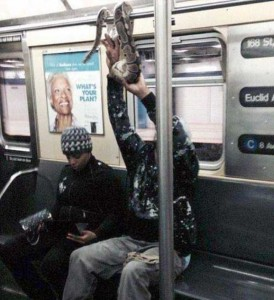 weird-strange-people-subway (21)