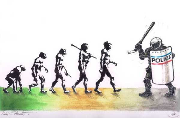 evolution-illustrations (1)