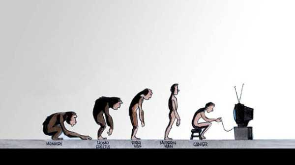 evolution-illustrations (22)