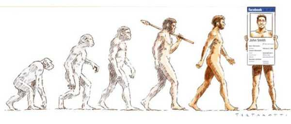 evolution-illustrations (25)