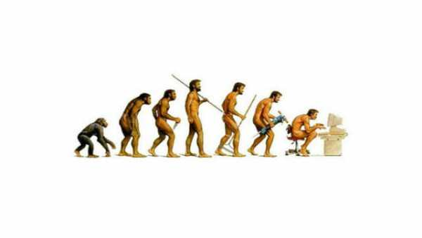 evolution-illustrations (28)
