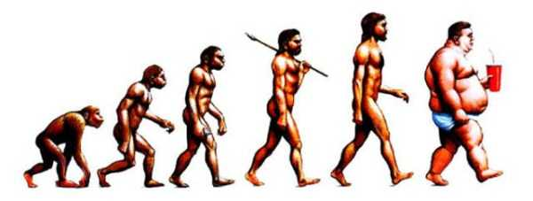 evolution-illustrations (32)