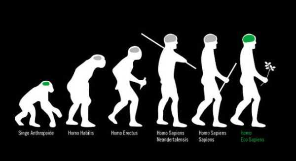 evolution-illustrations (37)