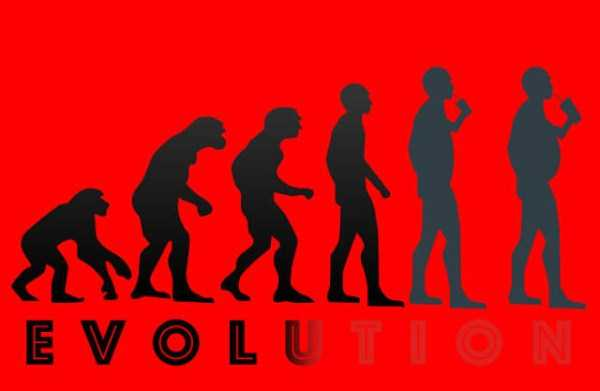evolution-illustrations (4)