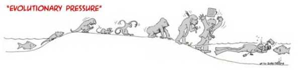 evolution-illustrations (5)