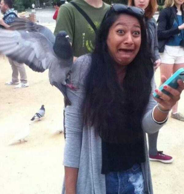 perfectly-timed-photos (17)
