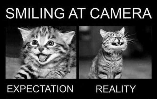 expectations-vs-reality (3)
