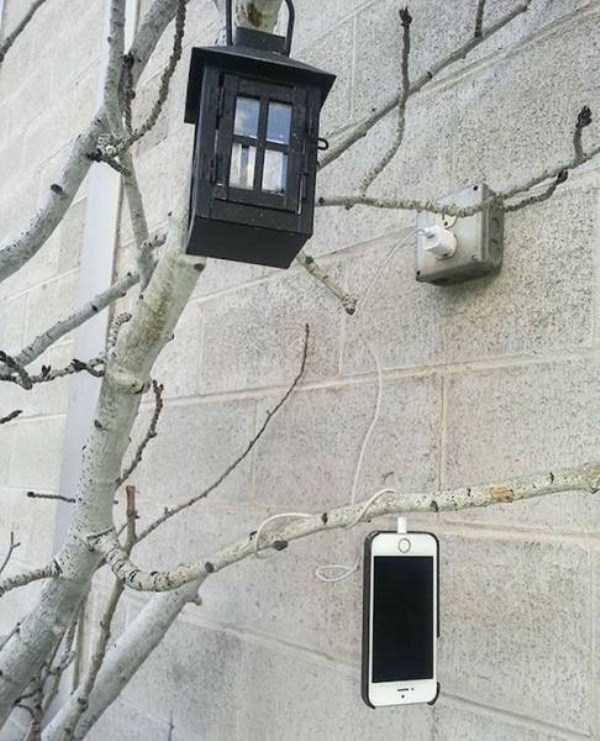 funny-charging-mobile-phone (4)