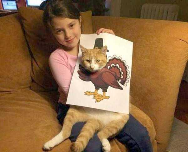 tolerant-patient-pets (19)