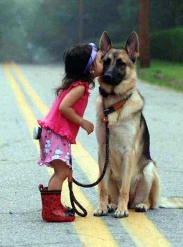 tolerant-patient-pets (3)