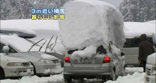 cars-covered-with-snow (3)