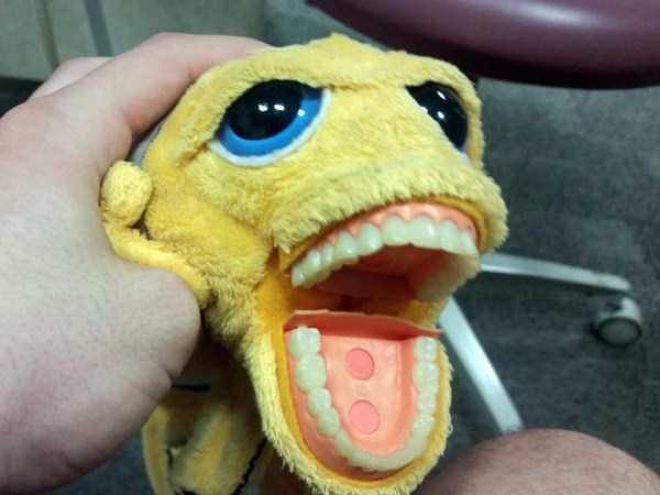 disturbing-dentist-toys-for-kids (11)