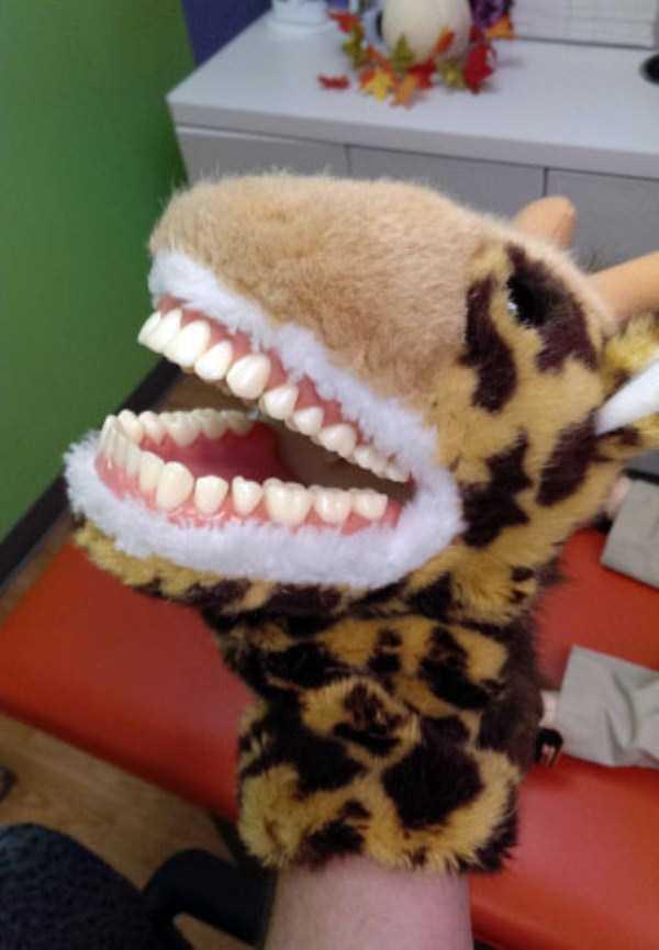 disturbing-dentist-toys-for-kids (4)