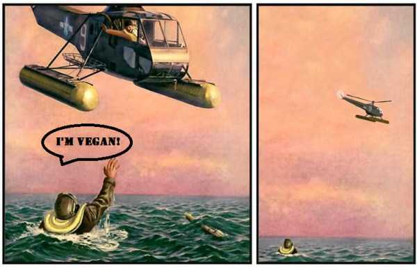 helicopter-rescue-comic (2)