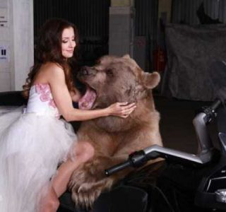 Russian Model Poses With a Giant Bear (20 photos)
