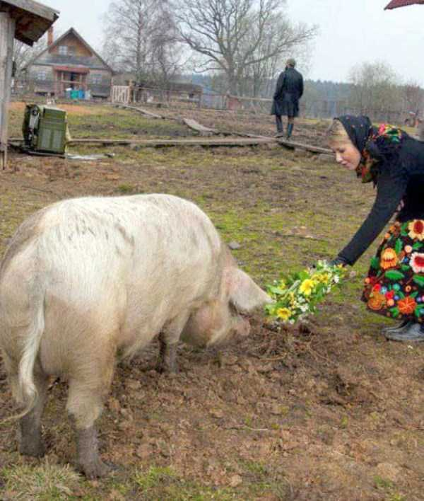 russian-village-funny-pics (16)
