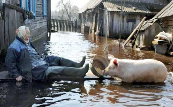 russian-village-funny-pics (2)