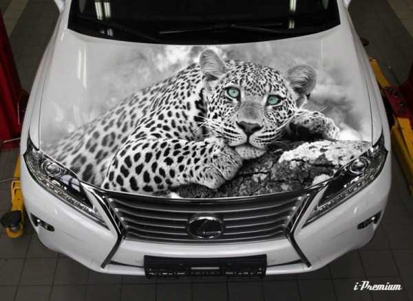 Awesome-Airbrushed-Cars (33)