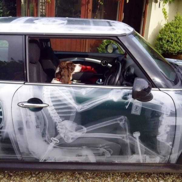 Awesome-Airbrushed-Cars (5)