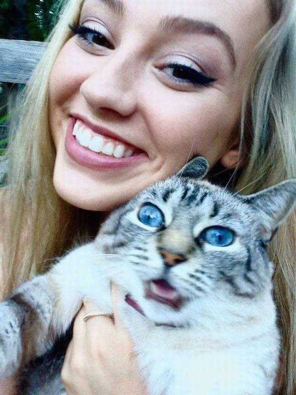 cats-hate-selfies (1)