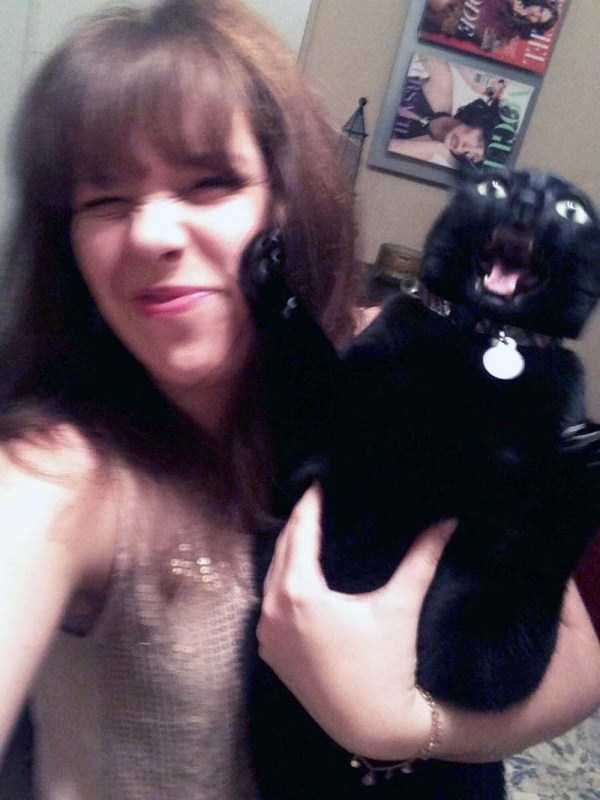 cats-hate-selfies (22)