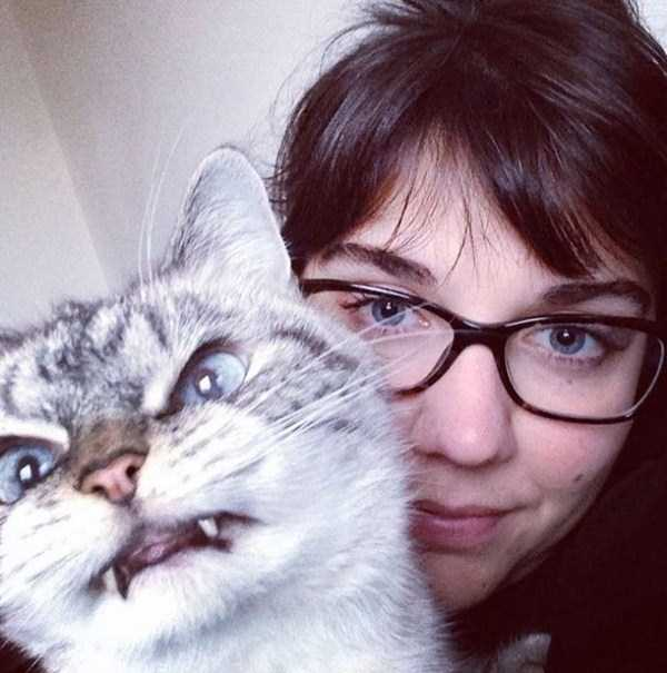 cats-hate-selfies (6)