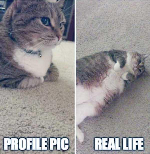 expectations-vs-reality-funny-pics (4)