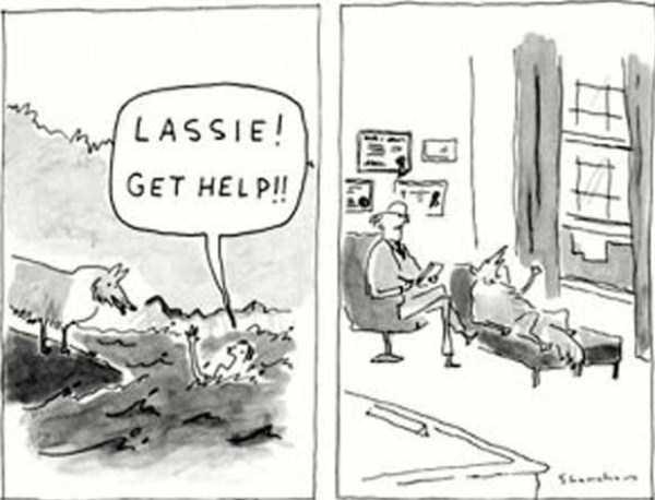 funny-comics (24)