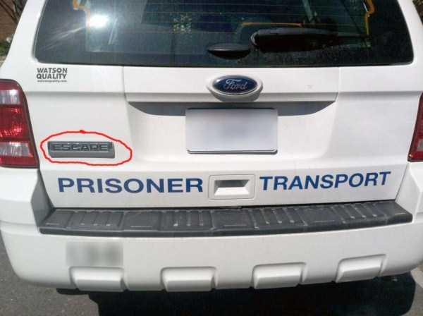 funny-irony-examples (3)