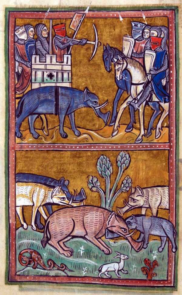 medieval-elephants-paintings (1)