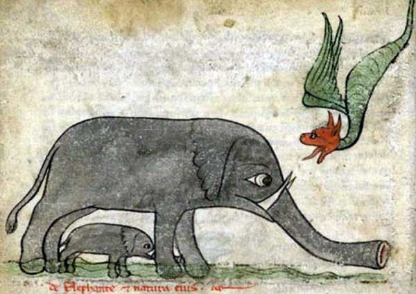 medieval-elephants-paintings (12)