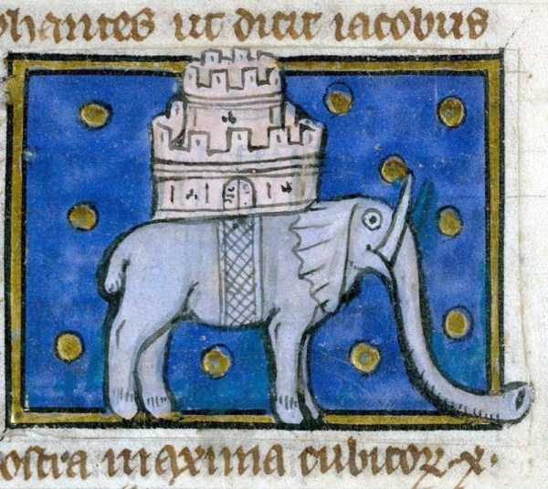 medieval-elephants-paintings (22)