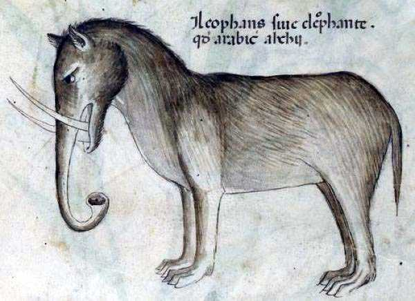 medieval-elephants-paintings (6)