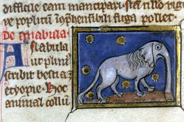 medieval-elephants-paintings (8)