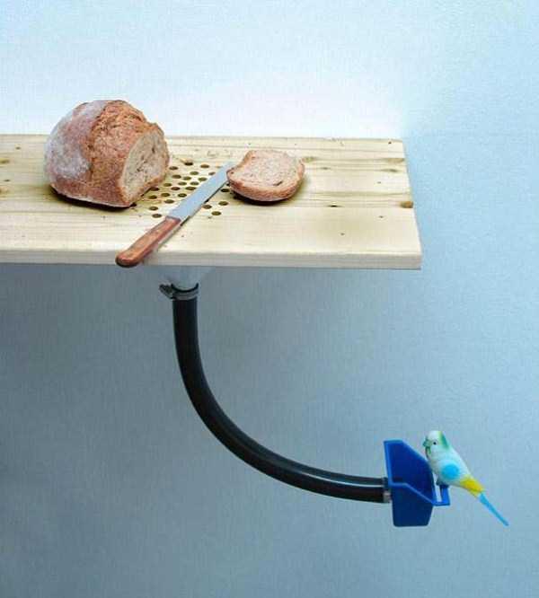 stupid-inventions (7)