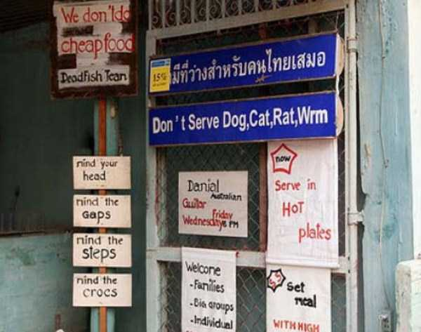 thailand-funny-pics (26)