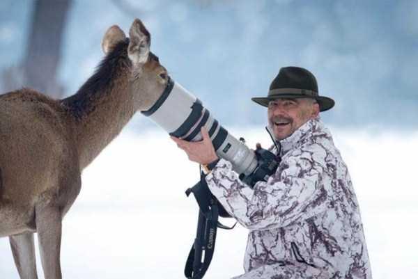 wild-animals-encounters (20)