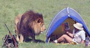 wild-animals-encounters (25)
