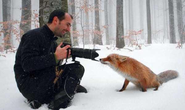wild-animals-encounters (29)
