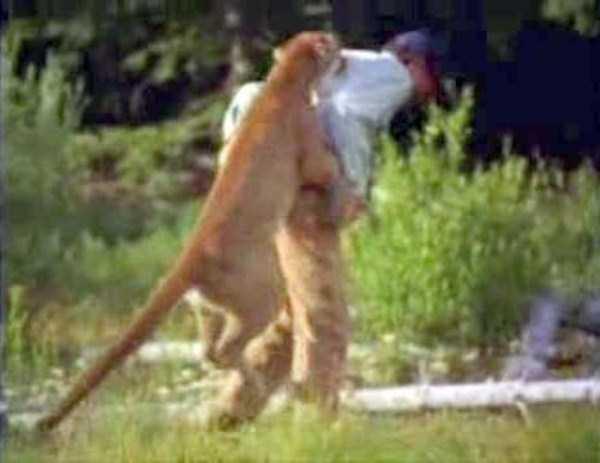 wild-animals-encounters (30)