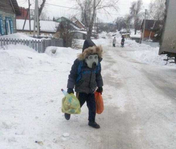 wtf-russia-pics (25)