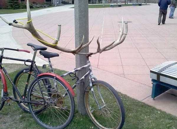 bike-funnies (65)