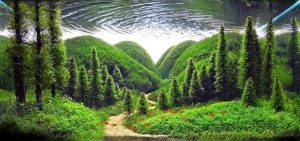 clearest-waters (1)