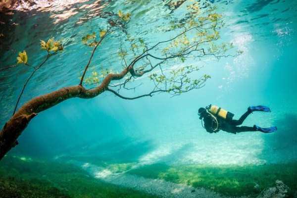 clearest-waters (19)