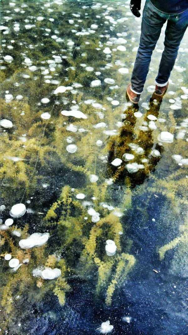 clearest-waters (27)