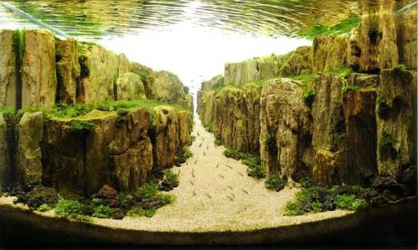 clearest-waters (6)