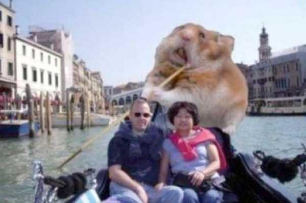funny-photoshop-fails (20)