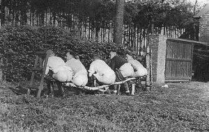 nazis-taking-dump (17)