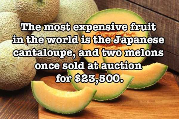 surprising-food-facts (29)